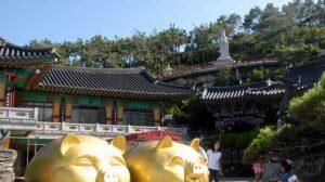 海東龍宮寺の福テジ
